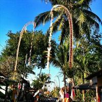 Bali1209_175_r